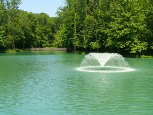 Pond Fountain Installation