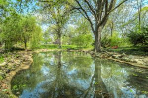 pond maintenance companies