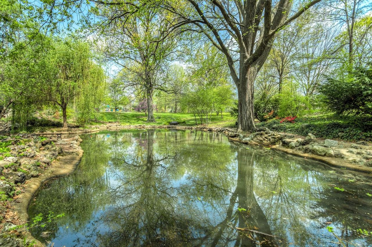 Pond Maintenance Companies
